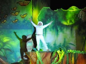Boto Tucuxi apresentou o tema Sairé Pra Dançar, buscando seu sétimo título. Agremiação tem um a menos que rival (Foto: Zé Rodrigues/TV Tapajós)
