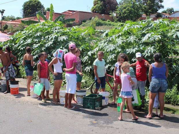 Moradores formam fila para pegar água em horta comunitária do bairro Promorar (Foto: Gil Oliveira/G1)
