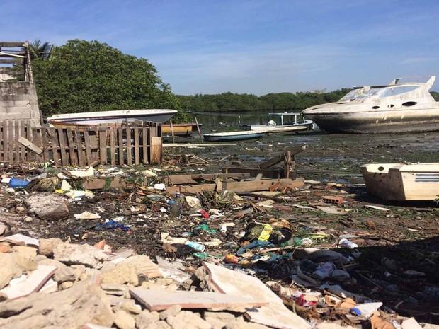 Segundo ambientalista, Baía de Guanabara corre risco de secar (Foto: Nicolás Satriano/G1)