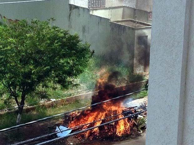 Fumaça de incêndio incomoda moradores de Bosque das Juritis (Foto: Laura Ravagnani/ Divulgação)