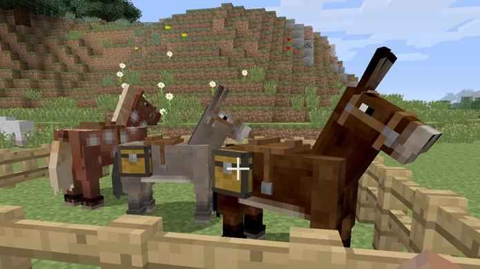 Confira como reproduzir cavalos e burros em Minecraft para obter mulas (Foto: Reprodução/Rafael Monteiro)