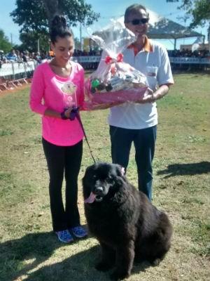 Kiara foi eleita o maior cão do dia e deixou a Bárbara Borges orgulhosa (Foto: Mariana Bonora/G1)