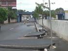 Chuva forte causa estragos na zona rural de Buritizal e em Franca, SP