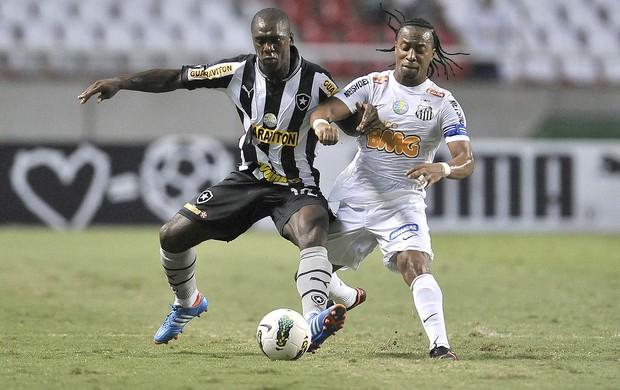 Seedorf e Arouca, Botafogo e Santos (Foto: Fernando Soutello / AGIF)