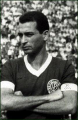 Vicente Arenari, campeão paulista pelo Palmeiras (Foto: Divulgação)