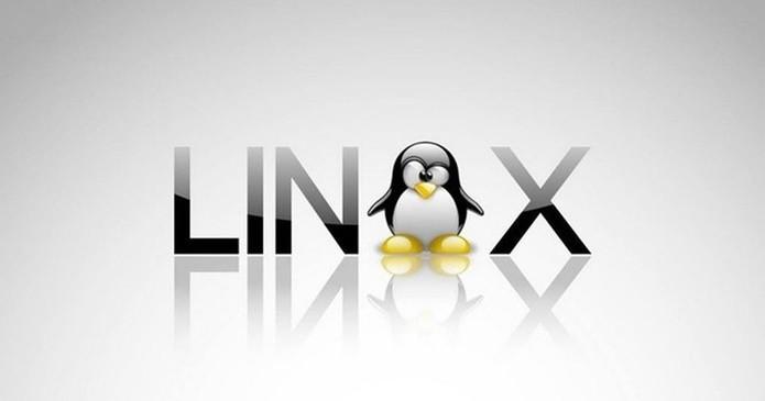 O Linux é compatível com uma grande variedade de sistemas de arquivos (Foto: Divulgação/Linux)