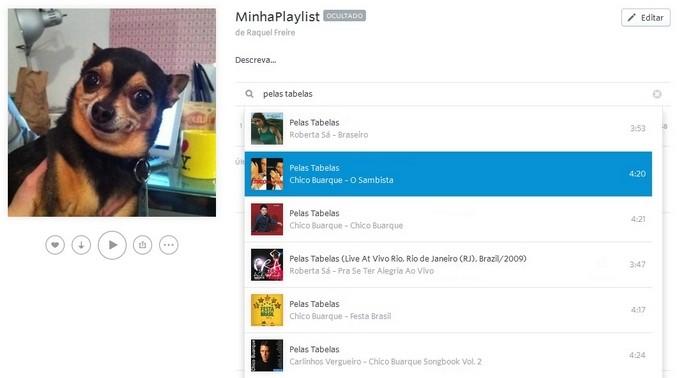 Método para incluir faixas à playlist rapidamente (Foto: Reprodução/Raquel Freire)