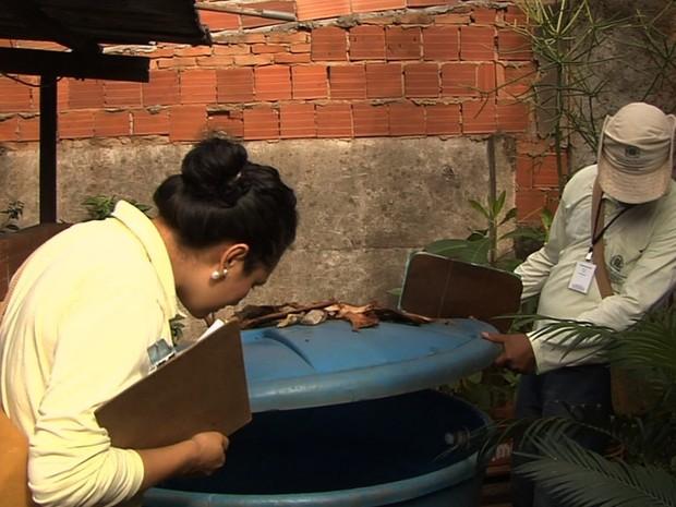 Agentes de saúde fazem pesquisa de índice de infestação do Aedes aegypti em Goiânia, Goiás (Foto: Reprodução/TV Anhanguera)