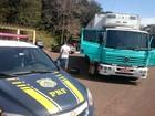 PRF apreende 3,5 t de camarão em caminhão que seguiria para SC