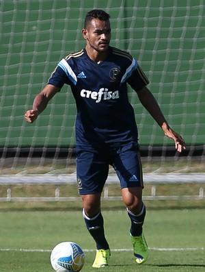 Jackson Palmeiras (Foto: Cesar Greco/Ag. Palmeiras/Divulgação)