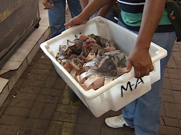 12 toneladas de peixes estragados são apreendidas em Governador Valadares (Foto: Reprodução/InterTV)