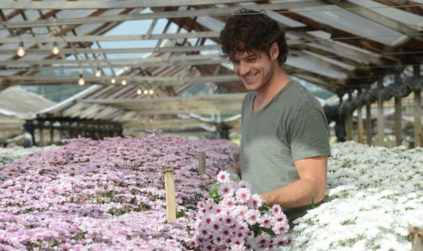 Marco Pigossi é dono de uma cooperativa de flores, em Sangue Bom (Foto: Zé Paulo Cardeal/ TV Globo)