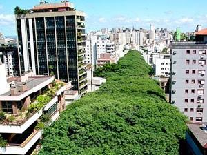 Rua Gonçalo de Carvalho (Foto: Ricardo Stricher / PMPA)