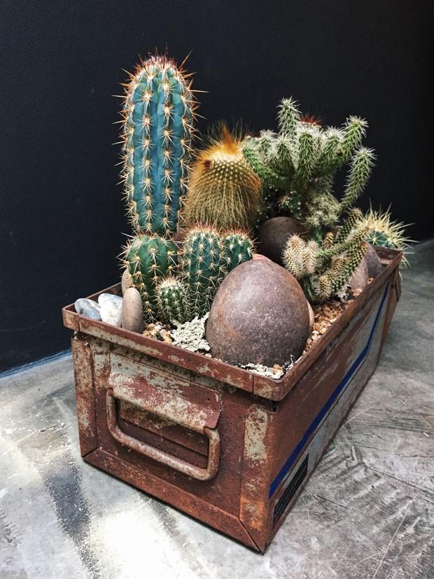 FLO Atelier Botânico e Micasa lançam objetos de arte botânicos (Foto: Divulgação)