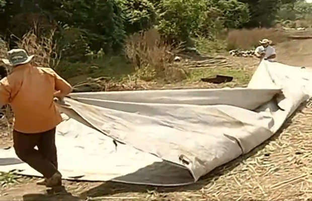 Camponeses cumpriram determinação judicial e deixaram fazenda, em Goiás (Foto: Reprodução/TV Anhanguera)