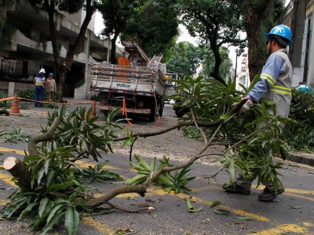 Ruas do bairro de Nazaré, em Belém, voltarão a ser interditadas neste fim de semana para manutenção de árvores. (Foto: Paula Sampaio/ O Liberal)