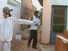 7 cidades deixam de decretar epidemia de dengue e comprometem o combate