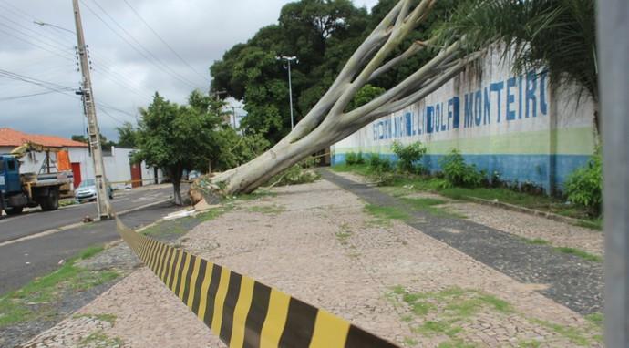 Lindolfo Monteiro interditado (Foto: Abdias Bideh/GloboEsporte.com)