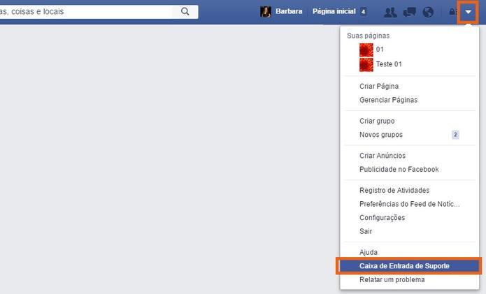 Acesse a caixa de entrada de suporte no Facebook (Foto: Reprodução/Barbara Mannara)