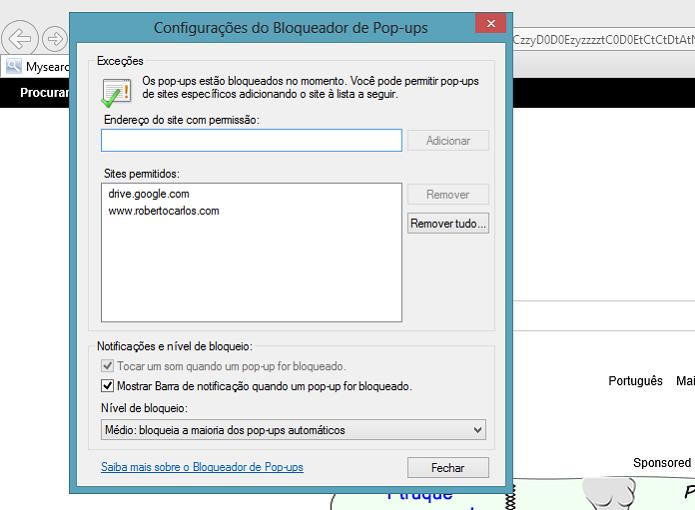 Assim como nos outros navegadores, IE tem exceções (Foto: Aline Jesus/TechTudo) (Foto: Assim como nos outros navegadores, IE tem exceções (Foto: Aline Jesus/TechTudo))