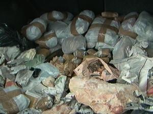 Mais de 100 fósseis arqueológicos foram apreendidos em Uruguaiana (Foto: reprodução/RBS TV)