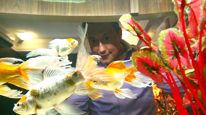 O decorador Michel Lebedka tem aquários há mais de 10 anos e considera-se um apaixonado (Foto: reprodução EPTV)