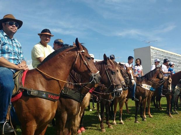 Manifestantes pró-vaquejada reunidos no gramado da Esplanada dos Ministérios, em Brasília, nesta terça-feira (25) (Foto: Elielton Lopes/G1)