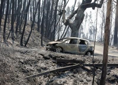 incêndio-florestal-portugal (Foto: Paulo Novais/Lusa)