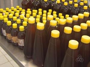Até abril de 2016, apicultores pretendem colher 300 mil kg de mel no estado (Foto: Reprodução/Rede Amazônica em Roraima)