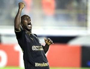 Seedorf comemora gol do Botafogo contra o Macaé (Foto: Ag. Estado)