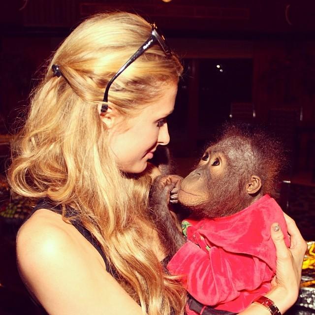 Paris Hilton com orangotango (Foto: Reprodução/Instagram)