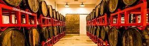Turismo cervejeiro desvenda história da bebida pelo mundo afora (Divulgação Bohemia)