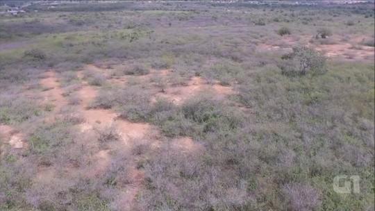 Desertificação ameaça 94% das terras na Paraíba e é irreversível, diz Insa