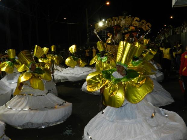 Desfile da escola Acadêmicos do Samba de Uberlândia (Foto: Caroline Aleixo/G1)