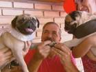 Casal de cachorros ganha festa de casamento em São Carlos, SP