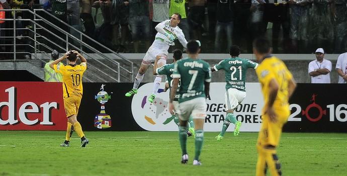 Palmeiras x Rosario Central Fernando Prass (Foto: Marcos Ribolli)