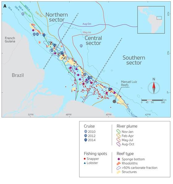 Localização dos recifes de corais descobertos, da pluma do rio Amazonas e das expedições feitas pela equipe de epsquisadores (Foto: Science)