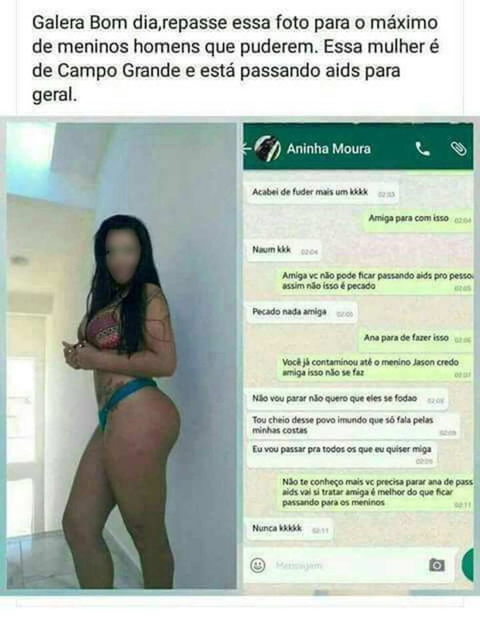 Perfil falso no WhatsApp atribuído a Aninha (Foto: Reprodução)