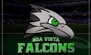 Boa Vista Falcons logo (Foto: Reprodução/Facebook)
