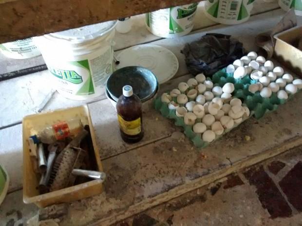 Alimentos ficavam sem condições de higiene e misturados com outros objetos (Foto: Divulgação/Vigilância Sanitária)