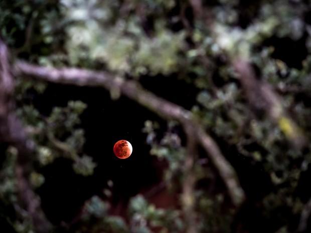 Lua de sangue em Maceió (Foto: Jonathan Lins/G1)