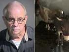 Americano é preso ao viajar para o Arizona para fazer sexo com cavalo