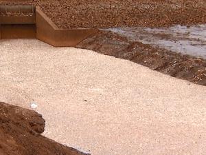 Segundo companhia, ainda não existe risco de contaminação da água em Araras (Foto: Ely Venâncio/ EPTV)