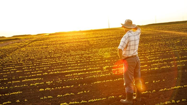 fazendeiro-fazenda-campo-por-do-sol-horizonte-interior-homem-pessoa (Foto: Thinkstock)