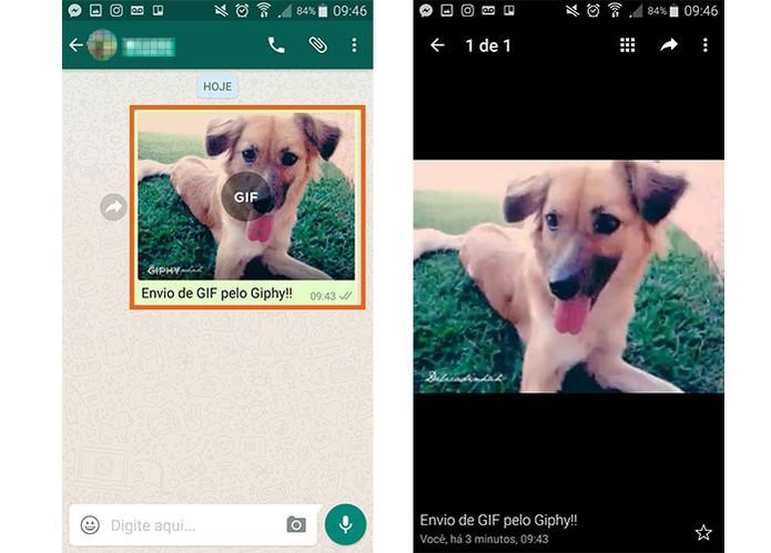 Visualize o GIF enviado pelo Giphy no WhatsApp (Foto: Reprodução/Barbara Mannara)