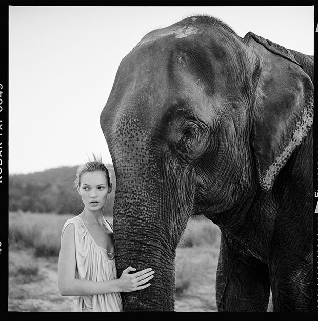 "Arthur Elgort's shoot for Vogue UK, ""Simply Divine"", featuring Kate Moss with an elephant, was styled by Lucinda Chambers and shot in Nepal (March 1994)   (Foto:  ARTHUR ELGORT)"