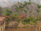 Defesa Civil registra 584 focos de incêndio em 18 dias no Amapá