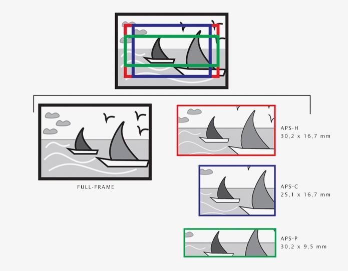 Comparativo das dimensões dos full-frame, APS-C, APS-H e APS-P (Foto: Reprodução/Luciana Vieira) (Foto: Comparativo das dimensões dos full-frame, APS-C, APS-H e APS-P (Foto: Reprodução/Luciana Vieira))
