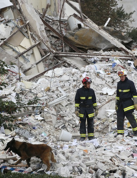 French firemen and their dog search in the rubble of a building after an explosion collapsed it, in Rosny-sous-Bois, outside Paris, Sunday, Aug. 31, 2014. French authorities say a four-story building in a northeastern Paris suburb has collapsed after an e