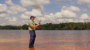 Pesca na Amazonia (Foto: Toni Mendes - TG)